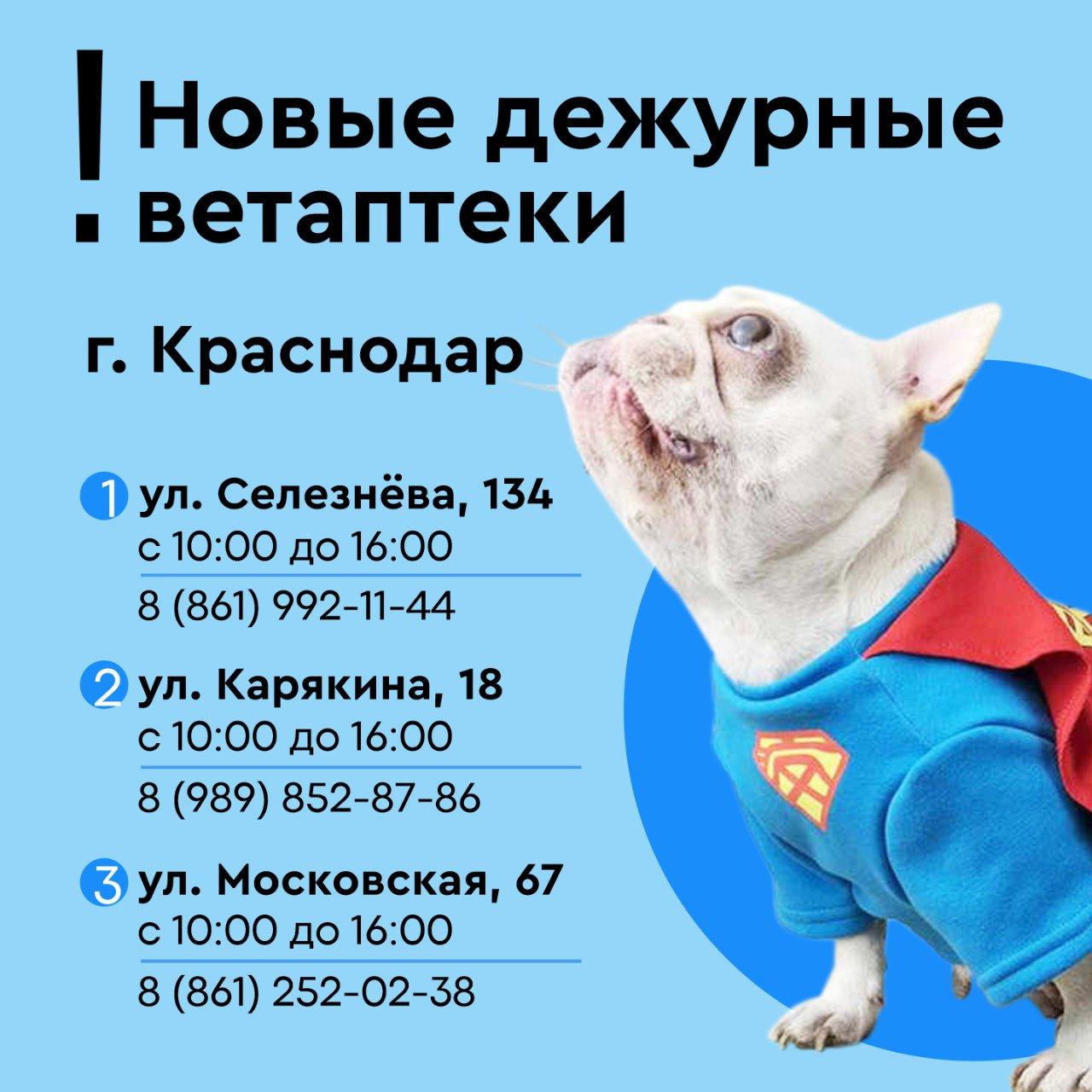 Новые дежурные ветаптеки в Краснодаре !